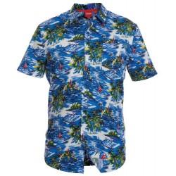 Havaijipaita - Inoa